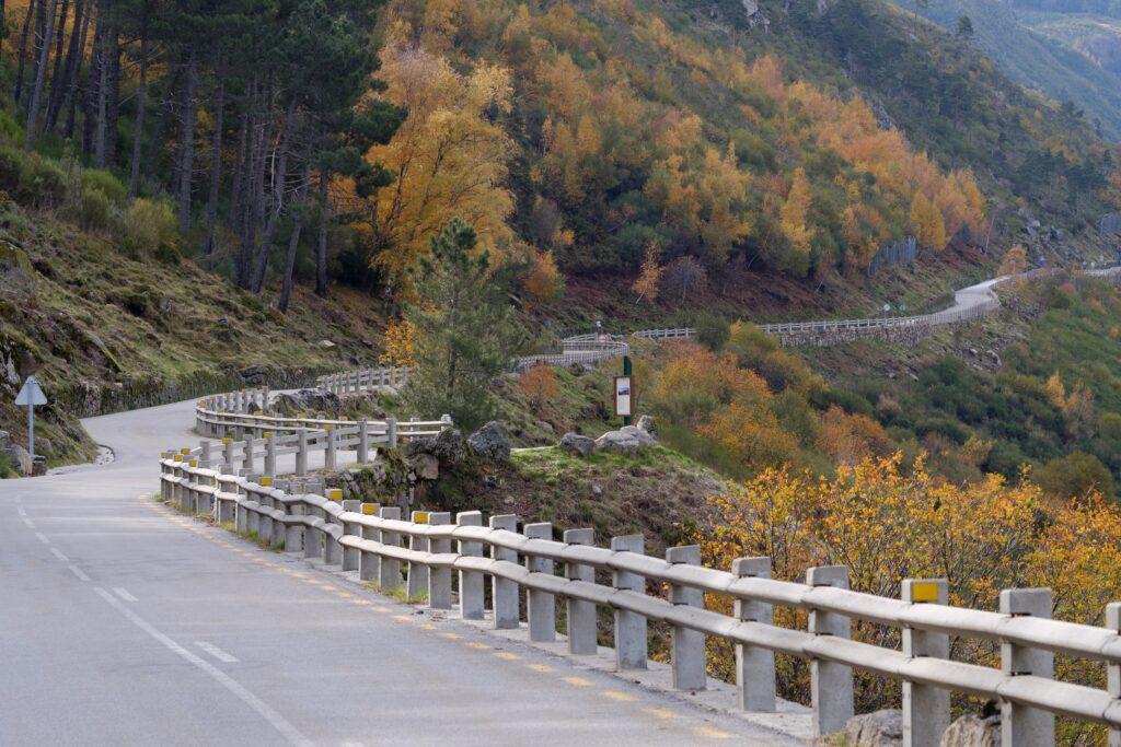 Guard rails on mountain road